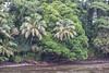 Wailuku River, Hilo.