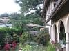 Candace's back yard