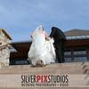 05-Formals-Bride Groom-Solo-Brian Amanda 006