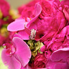 1-Rings Flowers-Brian Amanda 141