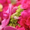 1-Rings Flowers-Brian Amanda 132