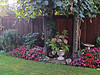 Ethel's back yard