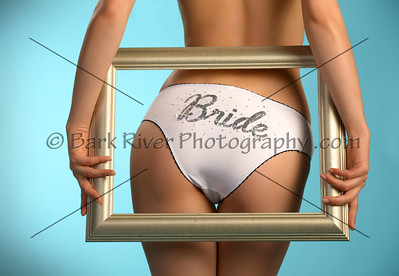 You can get these fun Bridal Panties through Victoria Secret, or ebay.