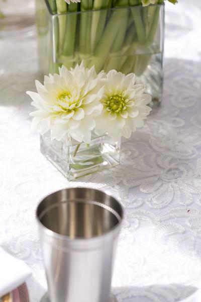 DawnMcKinstryPhotography_JGE-bridalshower-16