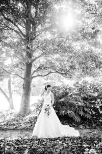 IMG_Bridal_Portrait_Tryon_Palace-3353