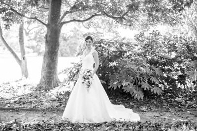 IMG_Bridal_Portrait_Tryon_Palace-3345