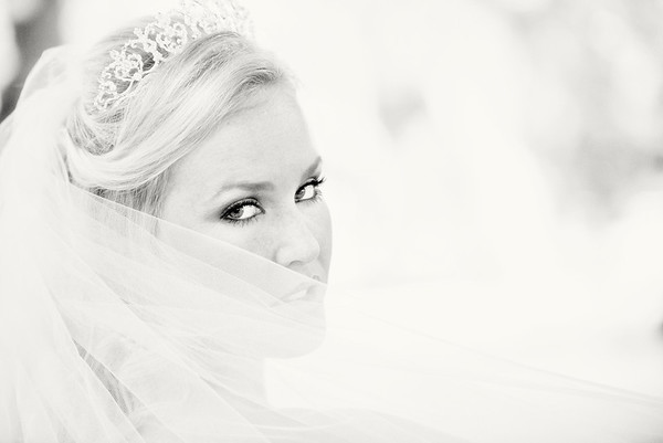 Austyn's Bridal Portraits