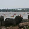 582 - Rocks and Logs watching Paddlers by Bridge