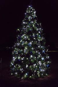 Bridgeland_Christmas_2014_DSC3377
