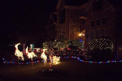 Bridgeland_Christmas_2014_DSC3380
