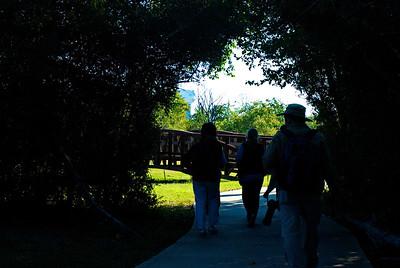 Bridgeland Photography Group photo walk on Sat 11-1-2014