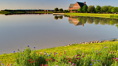 Bridgeland_Visitor_Center_Wildflowers_RAW9220