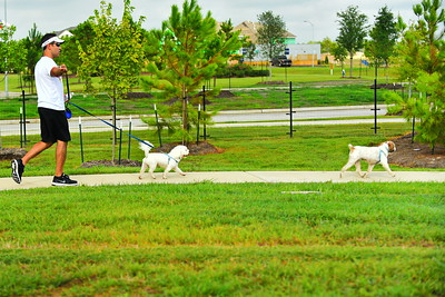 Bridgleland_Dog_Park_D75_6896a