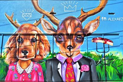 02252017_Houston_Wall_Murals_Bucks_750_0933