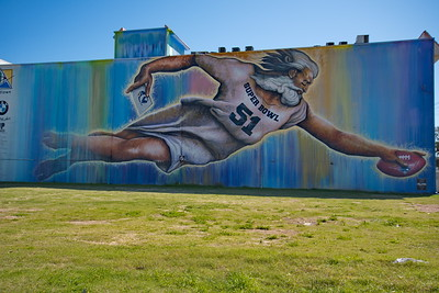 02252017_Houston_Wall_Murals_Preservons la Creation_entire_wall_750_0899
