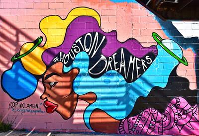 02252017_Houston_Wall_Murals_Houston_Dreamers_750_0912