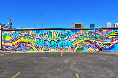 02252017_Houston_Wall_Murals_EaDo_Houston_750_0924