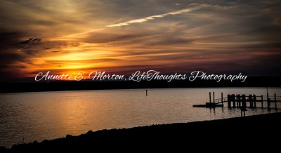 """""""Serenity Cove"""" Sandy Cove, North East MD"""