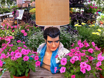 Elvis Lamp
