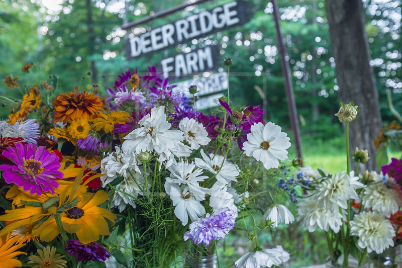 Deer Ridge Farm
