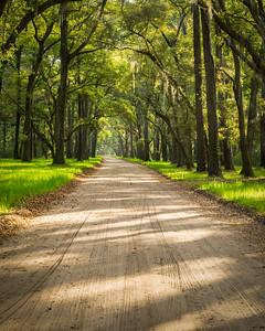 Oaken Road