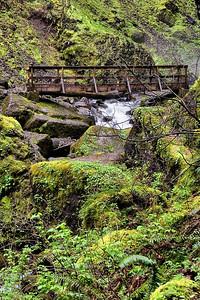 Elowah Falls Footbridge   | Sigma 18-50mm f/2.8 EX DC