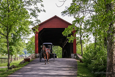 Horse & Buggy at Poole Forge Bridge - Lancaster County