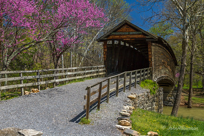 Spring Blossoms at Humpback Bridge - Alleghany County