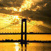 Throgsneck Bridge Golden