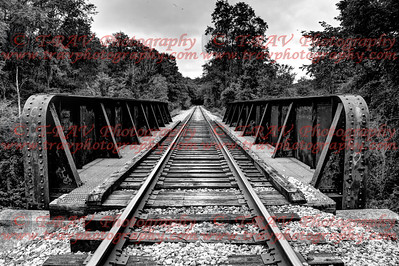 Black & White Trestle