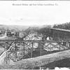 Rivermont Bridge and D Street Foot Bridge (03034)