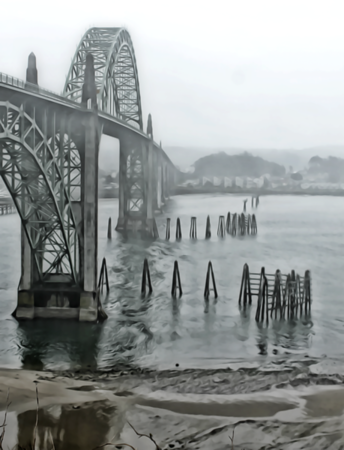 Foggy @ Newport