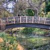 UC Davis Arboretum Bridge