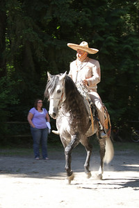 Spanish Dressage rider on his Andalusian Stallion.  That horse is stunning.