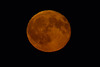 Moonrise-3481