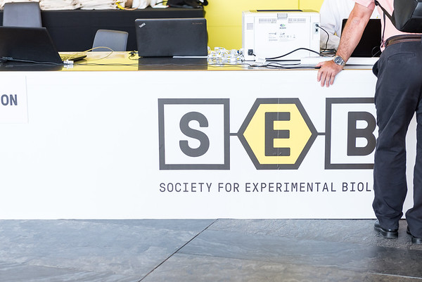 Check out more photographs from SEB 2019 in Seville at: https://www.simoncallaghanphotography.com/Brighton-Photographer-Blog/Conference/SEB/Seville-2019