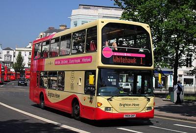 633 - YN04GKF - Brighton (Victoria Gardens) - 4.6.10