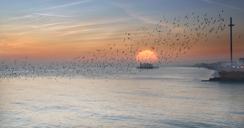 Brighton and hove sunset
