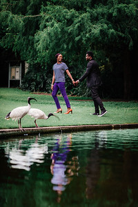 31_D+F_Pre-wedding_at_Brismane_Botanical_Gardens_She_Said_Yes_Wedding_Photography_Brisbane