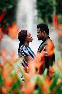 23_D+F_Pre-wedding_at_Brismane_Botanical_Gardens_She_Said_Yes_Wedding_Photography_Brisbane