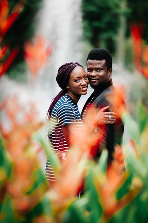 25_D+F_Pre-wedding_at_Brismane_Botanical_Gardens_She_Said_Yes_Wedding_Photography_Brisbane