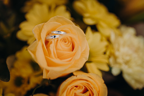 7_G+M_She_Said_Yes_Wedding_Photography_Sandstone_Point_Hotel