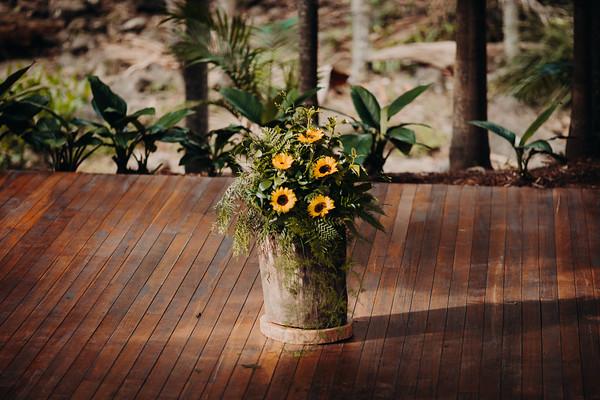 2_L+A at Cedar Creek Lodges_She_Said_Yes_Wedding_Photography_Brisbane