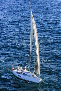 B2G16 Jules VidPicPro com-3271