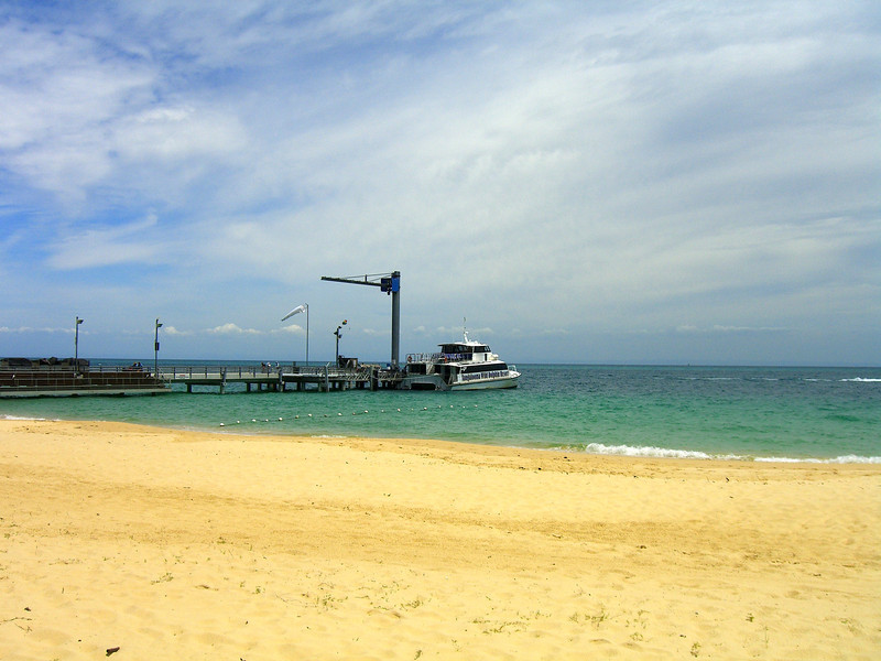 Tangalooma Dolphin Adventure from Brisbane Tour BT31G