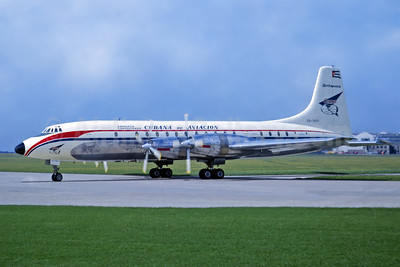 Cubana de Aviacion Bristol 175 Britannia 318 CU-T671 (msn 13515) CBG (Jacques Guillem Collection). Image: 954234.