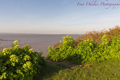 Portishead, Coastal Town, Severn Estuary, Bristol, North Somerset