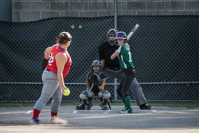 6/26/2017 Bernie O'Donnell |    Canon EOS 7D Mark II; EF100-400mm f/4.5-5.6L IS II USM 371mm; ISO 800; 1/1000; f/5.6