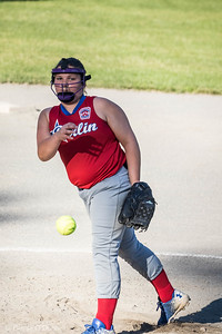 6/26/2017 Bernie O'Donnell |    Canon EOS 7D Mark II; EF100-400mm f/4.5-5.6L IS II USM 248mm; ISO 800; 1/1000; f/8