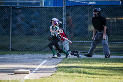 6/26/2017 Bernie O'Donnell |    Canon EOS 7D Mark II; EF100-400mm f/4.5-5.6L IS II USM 340mm; ISO 800; 1/1000; f/5.6